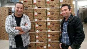 Yigit Greenhouse Company becomes Turkey's biocontrol champion and puts Biobest logo on pack